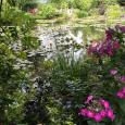 What Monet saw
